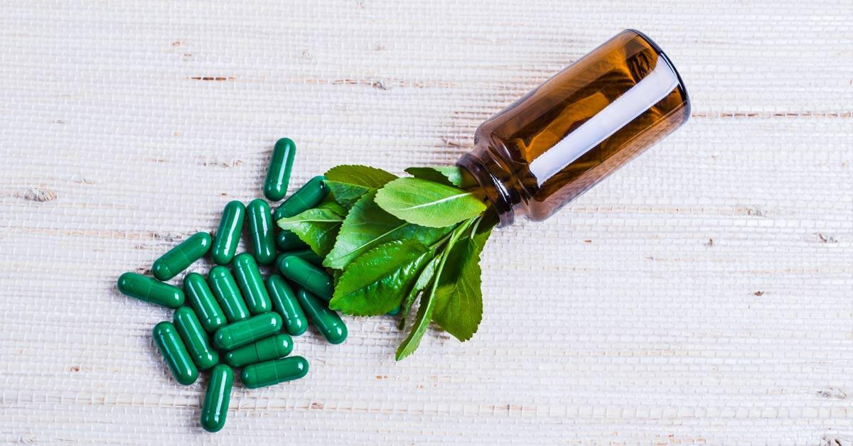 fitoterapicos medicinais