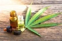autoridades-e-pesquisadores-discordam-sobre-uso-de-cannabis-medicinal