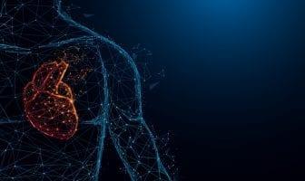 dia-mundial-do-coracao-fake-news-atrapalham-prevencao-de-doencas-cardiovasculares