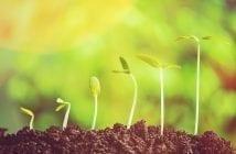 hypera-pharma-crescimento-e-mudancas-na-diretoria