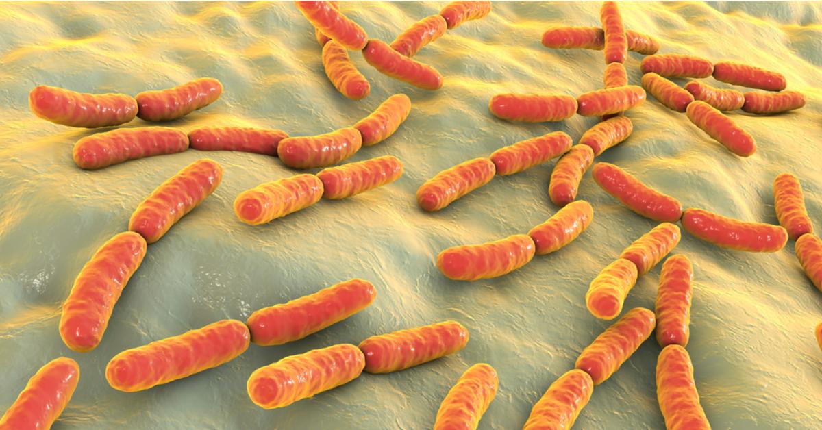 Resistência Bacteriana Ameaça A Saúde Global Guia Da Farmácia