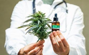 Anvisa-autoriza-primeiro-produto-à-base-de-Cannabis