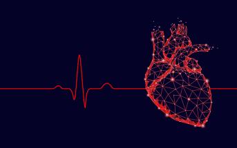 doencas-cardiovasculares-coracao-em-risco