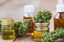 hempmeds-brasil-mostra-como-prescrever-cannabis-medicinal