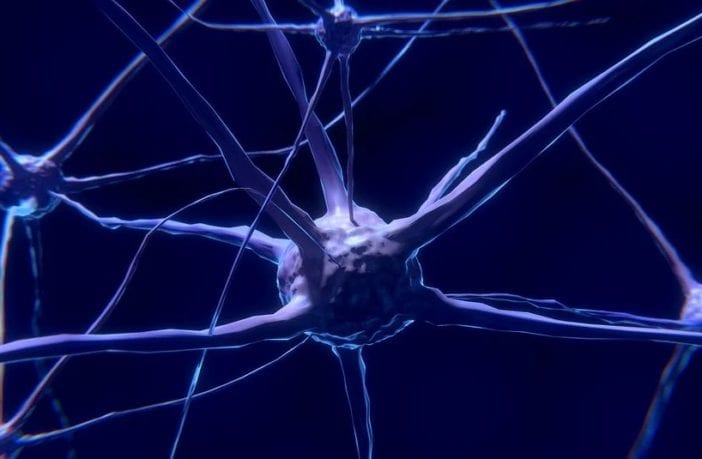 dia-nacional-da-epilepsia