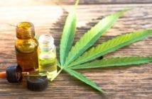 entenda-os-diferentes-usos-da-cannabis-medicinal