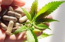 farmacêutico-cannabis
