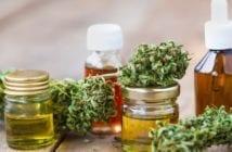 cannabis-dor-crônica