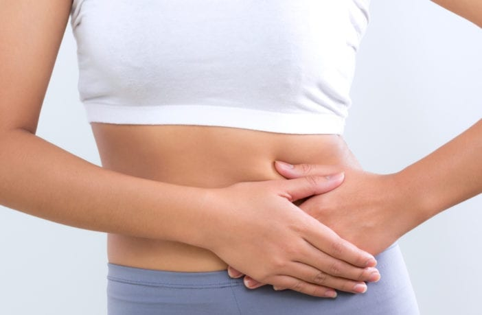 intestino-vida