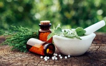 fitoterapicos-uma-solucao-para-diferentes-problemas