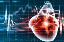 mortes-doenças-cardiovasculares